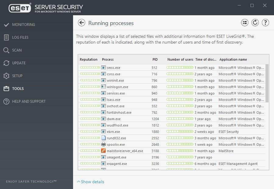 ESET Server Security for Microsoft Windows Server - Tools/Running processes