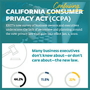 CCPA infographic thumbnail